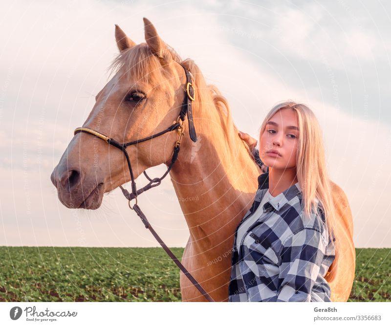 junges blondes Mädchen mit einem beigen Pferd Stil schön Gesicht Sommer Mensch Frau Erwachsene Freundschaft Hand Natur Tier Dorf Bekleidung Hemd nah natürlich