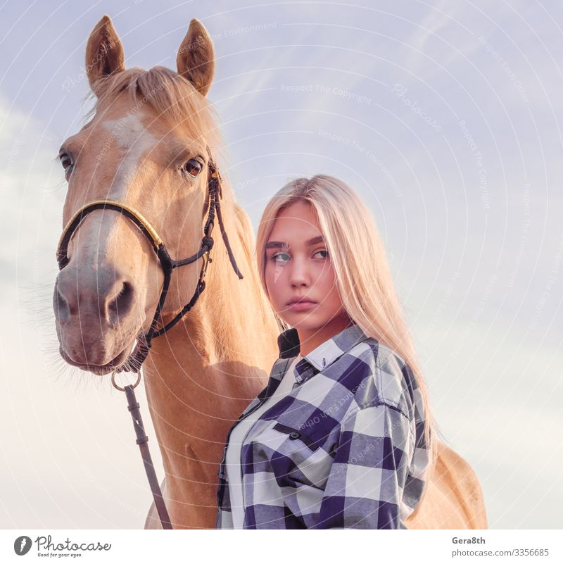 das Porträt eines jungen blonden Mädchens mit einem beigen Pferd auf der Ranch Stil schön Gesicht Sommer Frau Erwachsene Freundschaft Tier Himmel Dorf