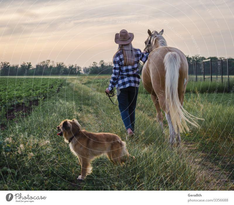 junges blondes Mädchen mit Hut und kariertem Hemd geht mit einem Pferd spazieren Stil Sommer Frau Erwachsene Freundschaft Natur Landschaft Pflanze Tier Himmel