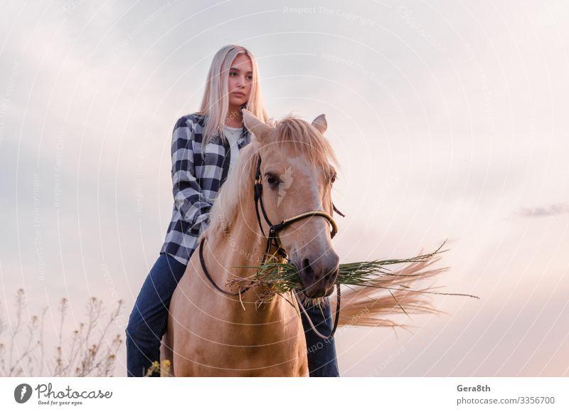 Ein junges blondes Mädchen sitzt auf einem Pferd auf der Ranch Stil Gesicht Sommer Frau Erwachsene Freundschaft Natur Tier Himmel Dorf Bekleidung Hemd Jeanshose