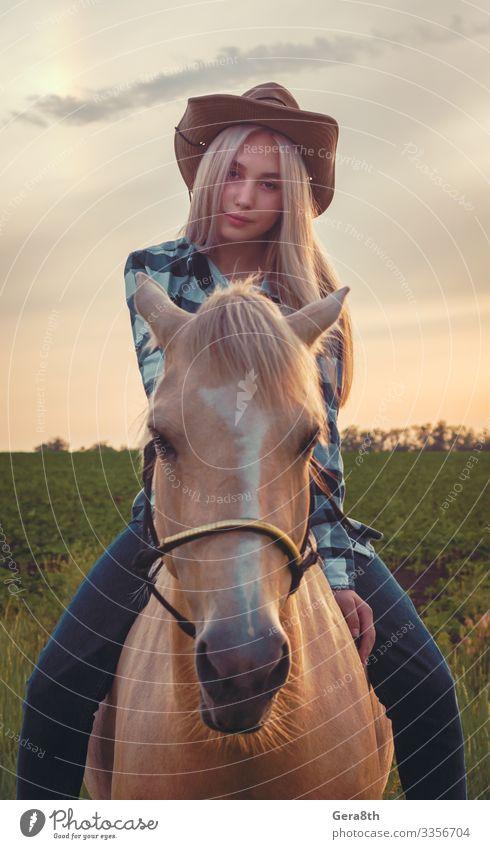 Mädchen mit Cowboyhut und blauen Jeans sitzt auf einem Pferd Stil Sommer Mensch Frau Erwachsene Natur Pflanze Tier Himmel Gras Wiese Dorf Bekleidung Hemd