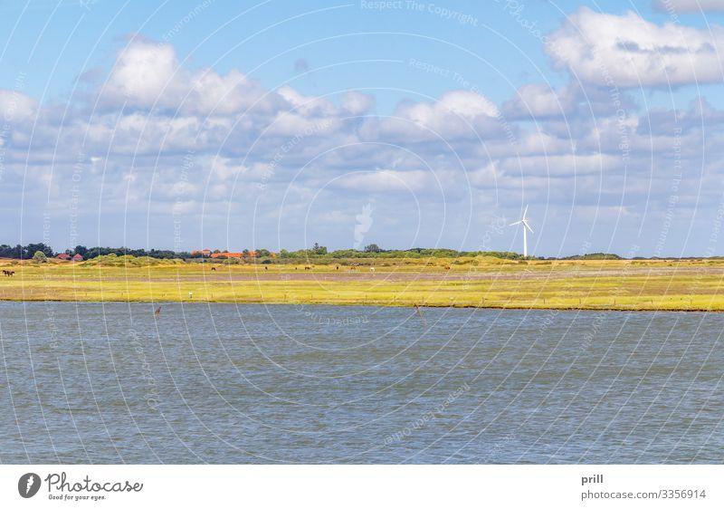 Spiekeroog in East Frisia Sommer Meer Insel Landschaft Wasser Küste Nordsee Dorf authentisch Ostfriesland Landkreis Friesland deutschland norddeutschland