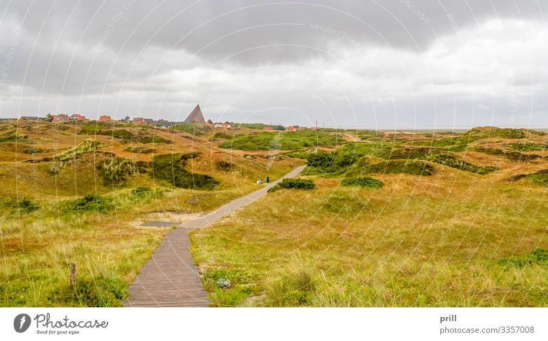 Spiekeroog in East Frisia Sommer Insel Landschaft Pflanze Sträucher Küste Dorf Wege & Pfade authentisch Ostfriesland Landkreis Friesland deutschland