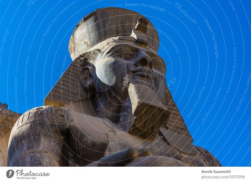 Statue Ramses II. im Karnak-Tempel in Luxor, Ägypten Ferien & Urlaub & Reisen Museum Mauer Wand Fassade Religion & Glaube africa afterlife ancient