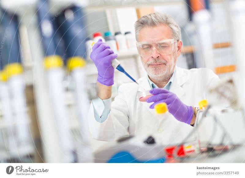 Lebenswissenschaftlerin, die im Labor forscht. Gesundheitswesen Medikament Wissenschaften lernen Prüfung & Examen Arbeit & Erwerbstätigkeit Beruf Arzt