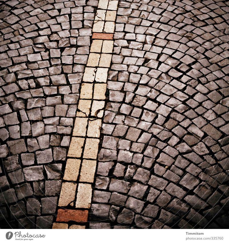 Dort. Stadt dunkel Straße Wege & Pfade Stein natürlich Linie ästhetisch einfach fest Pflastersteine Altstadt