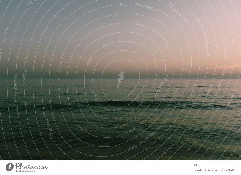 horizont Umwelt Natur Wasser Himmel Wolkenloser Himmel Schönes Wetter Wellen Küste Meer ruhig Sehnsucht Erholung Freiheit Frieden Horizont Pause Unendlichkeit