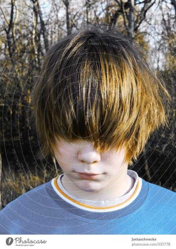 ......die Frisur sitzt Mensch Kind Jugendliche blau Traurigkeit Junge Haare & Frisuren Kopf träumen braun maskulin Kindheit stehen 13-18 Jahre einzigartig