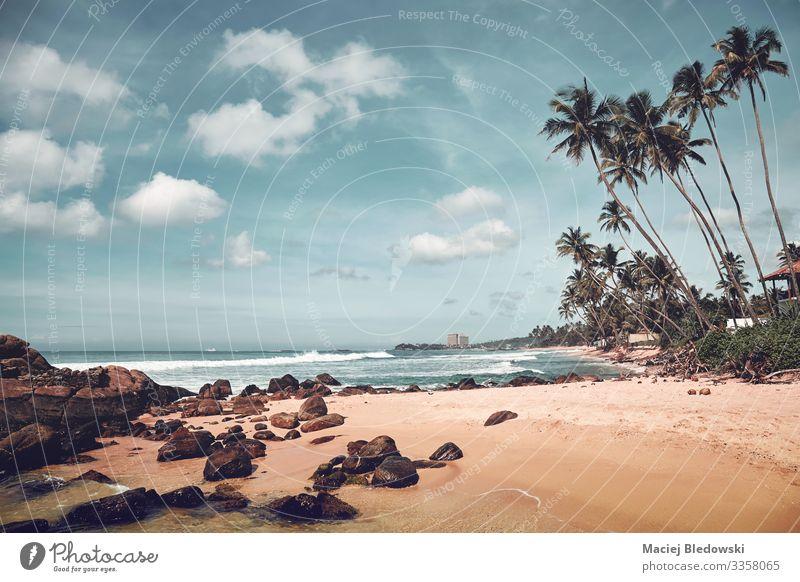 Tropischer Strand mit Felsen und Kokosnusspalmen, Sri Lanka. exotisch schön Erholung Ferien & Urlaub & Reisen Tourismus Ausflug Abenteuer Freiheit Sommer