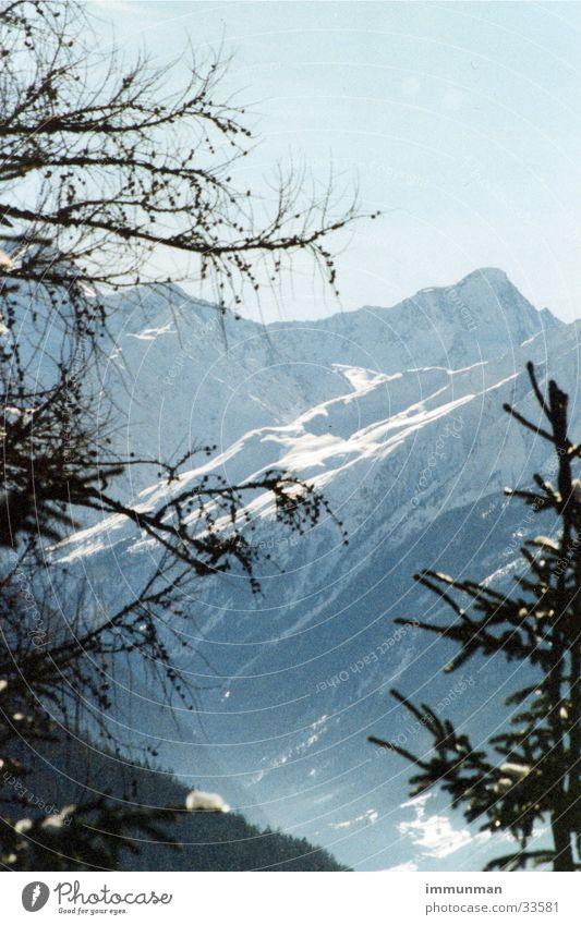 stubaier winter Himmel Baum Winter Schnee Berge u. Gebirge Gletscher Tal Fichte