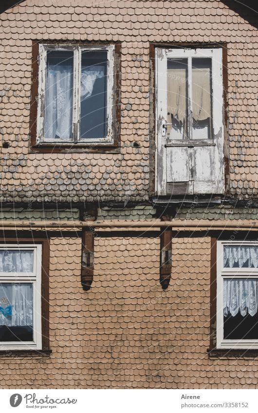 Bäh! | Das ist bestimmt noch zu haben! Haus Tag Menschenleer Detailaufnahme Außenaufnahme Farbfoto Altbau alt Zerstörung grau hellbraun kaputt abblättern