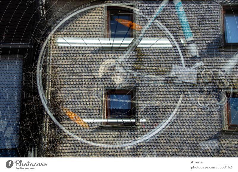 der Fahrradhändler gegenüber Altstadt Haus Fassade Fenster Schaufenster beobachten Geschwindigkeit kaufen Reflexion & Spiegelung Ladengeschäft verkaufen