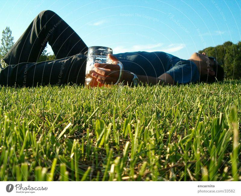 Kater Mann grün Erholung Wiese Garten Park maskulin schlafen Rasen trinken liegen Bier Alkoholisiert Hauskatze Skala Bierglas