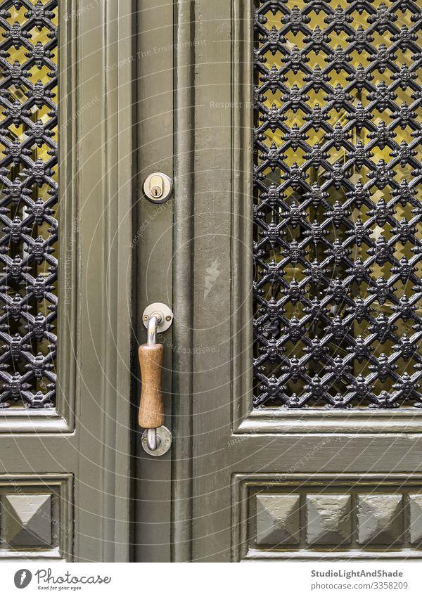 Grüne Tür mit Zierfenstern Haus Dekoration & Verzierung Gebäude Architektur Holz alt retro grün Farbe Tradition Eingang Raster ornamental olivgrün Handgriff