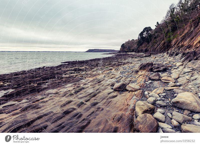 Felsenküste bei Brest Wasser Bretagne Weitwinkel Tag Außenaufnahme braun Menschenleer Schönes Wetter Horizont Landschaft Himmel außenaufname Meer Steine