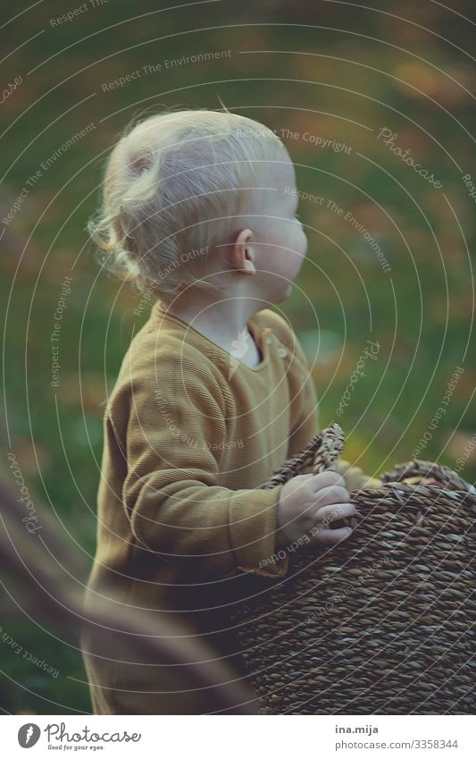 _ Kindererziehung Bildung Kindergarten lernen Mensch Kleinkind Junge Kindheit Leben 1 1-3 Jahre 3-8 Jahre Umwelt Natur Sommer Herbst Garten Park Abenteuer