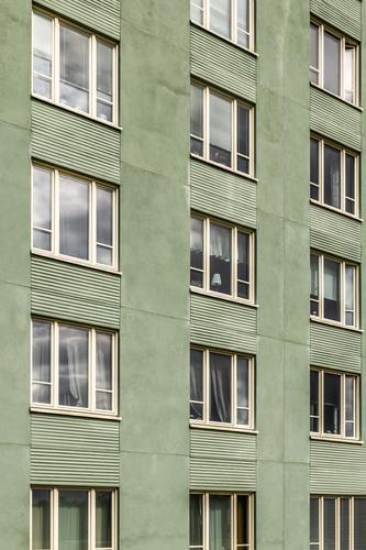 Fenster eines grünen Gebäudes Lifestyle Haus Umwelt Stadt Architektur Fassade einfach modern neu Sauberkeit Europa Europäer Stockholm Schweden Schwedisch
