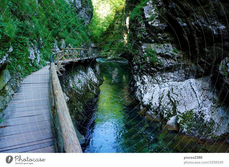 Holzweg entlang der Vintgar-Schlucht Ferien & Urlaub & Reisen Tourismus Sommer wandern Umwelt Natur Landschaft Moos Park Felsen Alpen Fluss Wasserfall Brücke