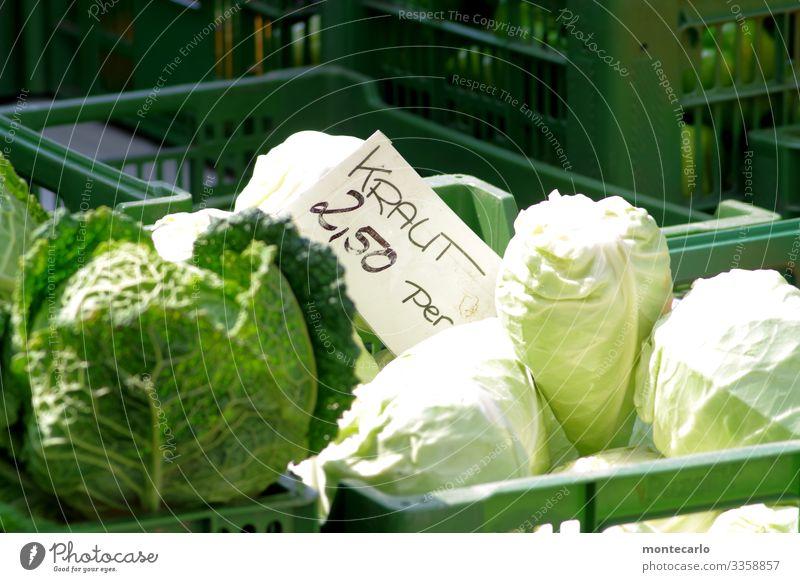 """Morgen gibts """"Bayrisch Kraut"""" grün Gesundheit Lebensmittel natürlich frisch authentisch kaufen einfach lecker rund Gemüse nachhaltig saftig Billig Weißkohl"""