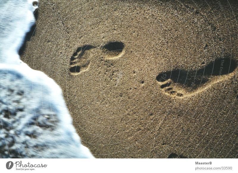 Carribean Footprints Wasser Meer Strand Fuß Sand Küste Spuren Vergänglichkeit Fußspur Abdruck