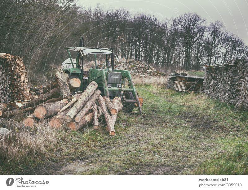 Alter deutscher Traktor auf dem Holzplatz in der Natur Landschaft Pflanze Himmel Baum Gras Wald Verkehr alt Deutsch Holzlager Brennholz Holz - Material veraltet