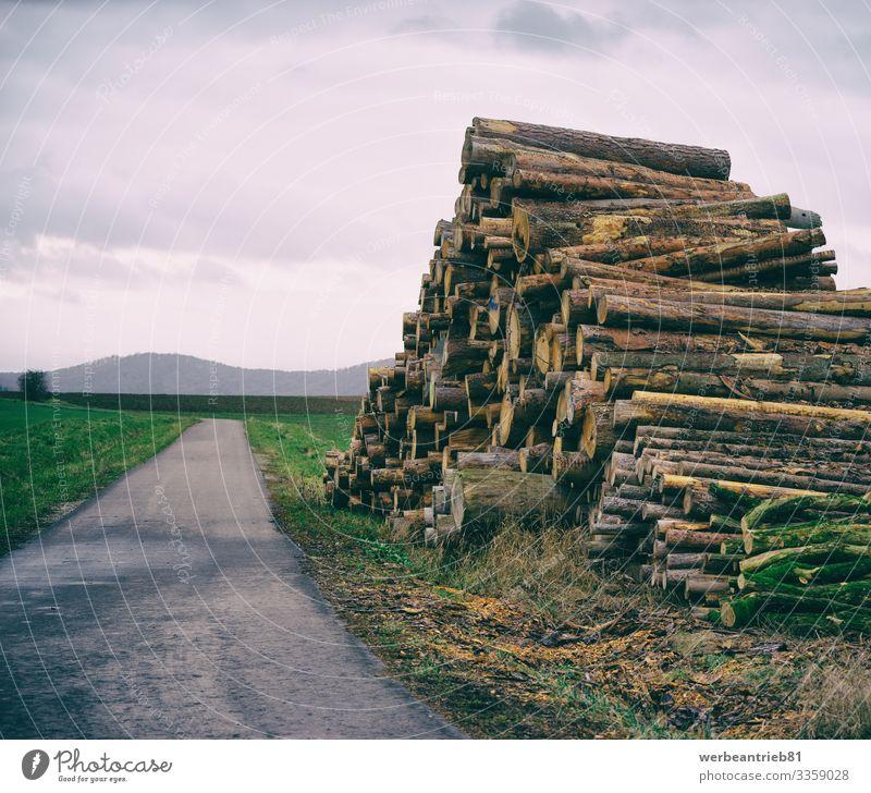 Gestapeltes Brennholz neben einer kleinen Straße ruhig Umwelt Natur Landschaft Pflanze Himmel Gras Verkehr Wege & Pfade lang Stapel Holz Landstraße Hochkultur
