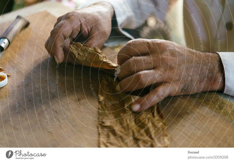 Handgemachte Zigarren, viñales - Kuba Lifestyle Insel Tisch maskulin Mann Erwachsene Männlicher Senior 1 Mensch 45-60 Jahre Kultur Natur Blatt Dorf Stadt machen