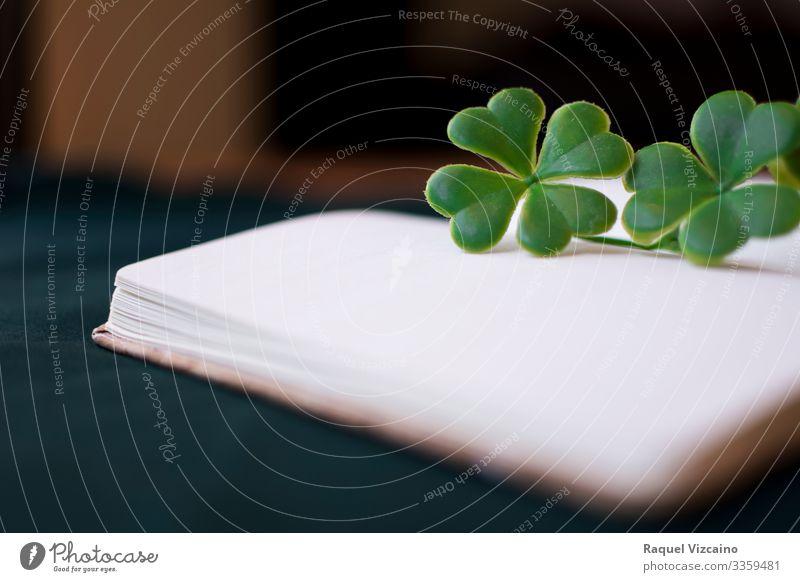 Leeres Notizbuch mit Klee. lesen Schreibtisch Bildung Büroarbeit Buch Pflanze Blume trebol Papier grün weiß Weisheit offen vereinzelt Page Literatur