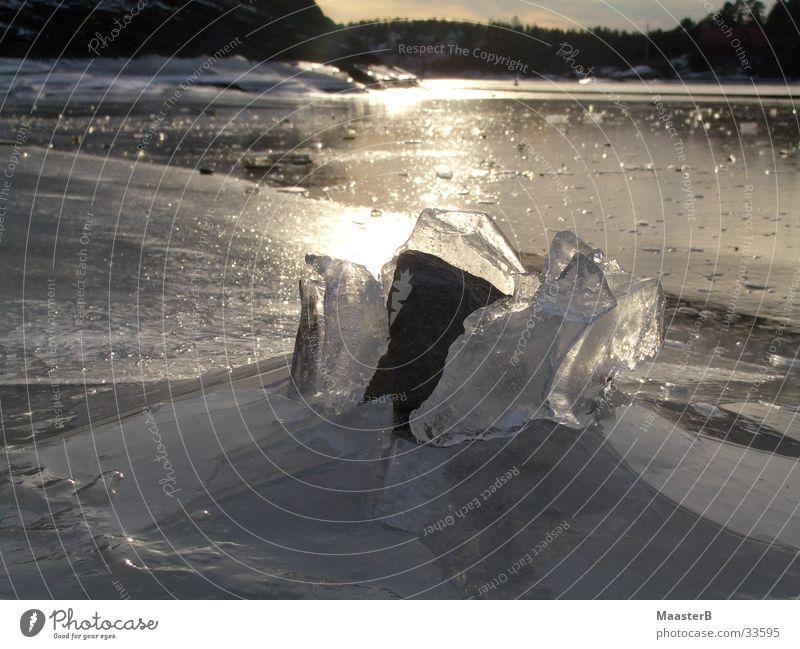 cracking the ice Insel Natur Eis Frost Fjord Norwegen Stein Kraft bizarr Eisfläche Sandvika gebrochenes Eis Außenaufnahme Menschenleer Dämmerung