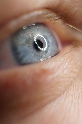 Durchblick Mensch maskulin Junger Mann Jugendliche Erwachsene Gesicht Auge 1 30-45 Jahre beobachten Denken glänzend Blick träumen Freundlichkeit blau