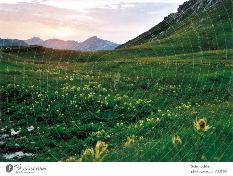 Wiese im Gebirge Berge u. Gebirge
