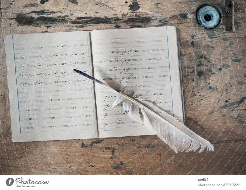 Vor hundert Jahren Sammlerstück Schulheft Schreibheft Schreibfeder Feder Tintenfaß Tischplatte Papier Linie Holz Schriftzeichen Sütterlin altdeutsch
