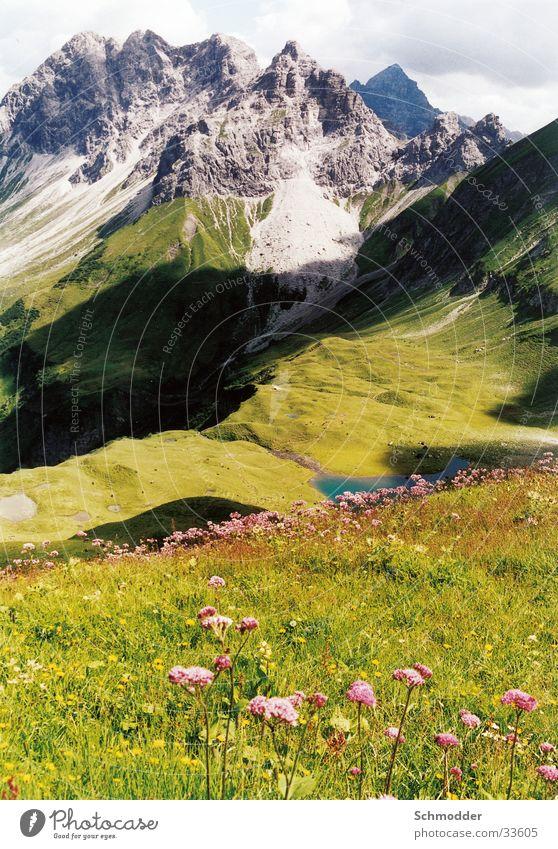 Berglandschaft Wiese Blume Wolken Berge u. Gebirge Pflanze Ferne Gebrige
