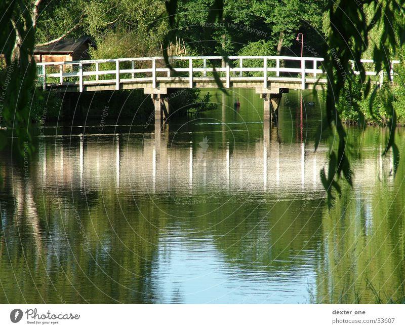 Brücke am See Natur Wasser Park