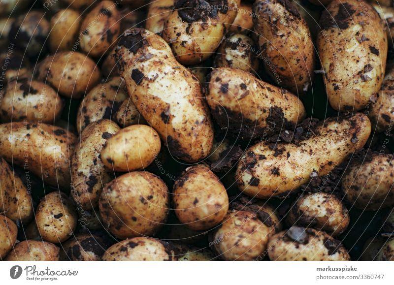 Frischgemüse auf dem Bauernmarkt analoge Fotografie 35mm Filmfotografie Filmscan Scan Leica R7 bayerisch frisch Biografie lokal Gemüse Vegetarische Ernährung