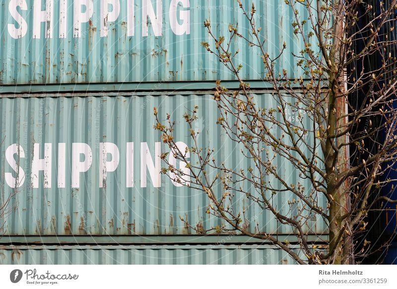 Container Business Wachstum Wandel & Veränderung Güterverkehr & Logistik türkis Dienstleistungsgewerbe eckig