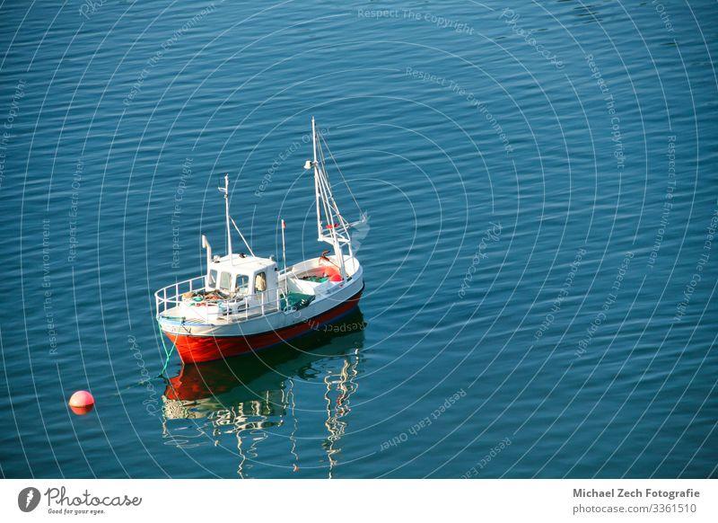 rotes Fischerboot im Fjord in Norwegen vertäut, schön Ferien & Urlaub & Reisen Tourismus Kreuzfahrt Sommer Meer Insel Berge u. Gebirge Natur Landschaft Himmel