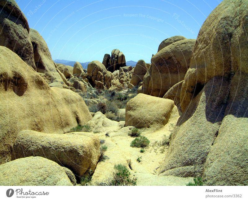 steiniger weg Stein Felsen