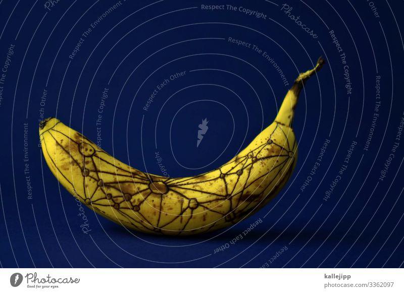 relativitätstheorie Lebensmittel Frucht Ernährung Bioprodukte Vegetarische Ernährung Natur Kommunizieren Wissenschaften Relativitätstheorie Biegung Zeit Banane