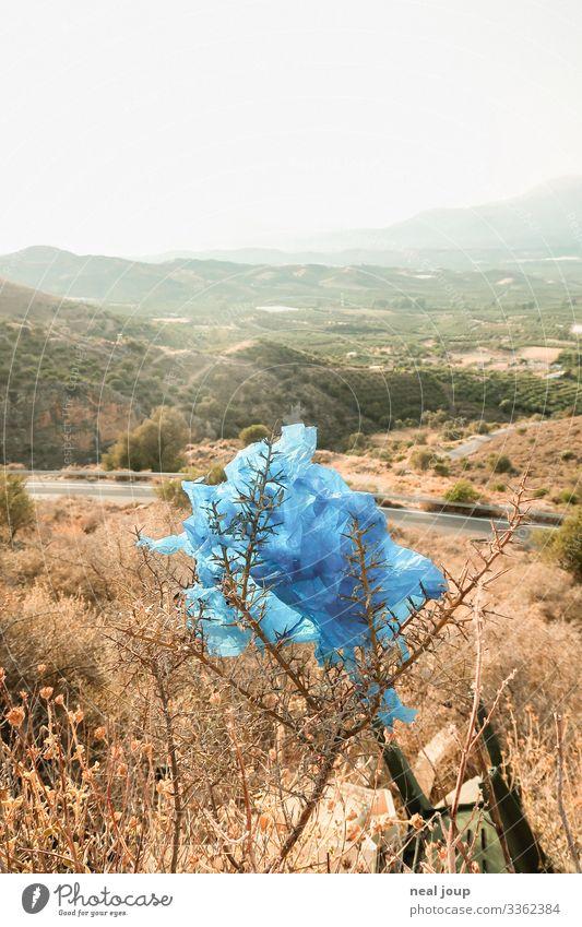 Elegantly wasted -VII- kaufen Reichtum Umwelt Natur Landschaft Sträucher Griechenland Verpackung Plastiktüte Müll Kunststoff hängen nachhaltig trashig trist