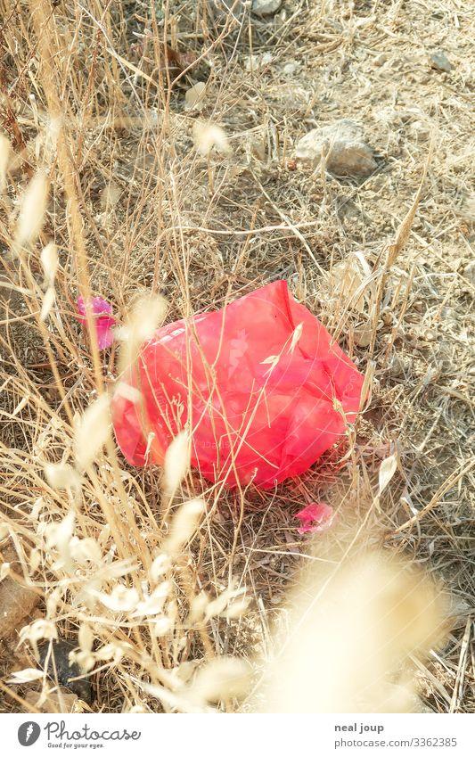 Elegantly wasted -VIII- kaufen Umwelt Natur Landschaft Sträucher Verpackung Plastiktüte Müll Kunststoff hängen liegen kaputt trashig trist trocken rot