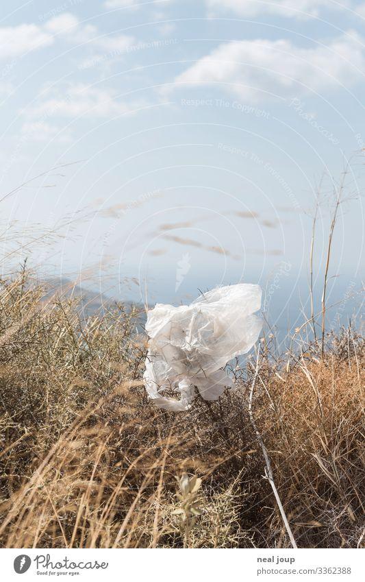 Elegantly wasted -II- Reichtum Umwelt Natur Sträucher Verpackung Kunststoffverpackung Plastiktüte Müll trashig trist Respekt ignorant Hemmungslosigkeit