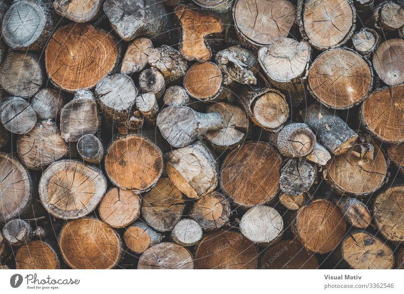 Detail der gestapelten Holzscheite Umwelt Natur Baum Wald alt natürlich braun Farbe Gestapelte Holzscheite abstrakte Fotografie Nutzholz Kofferraum Baumrinde