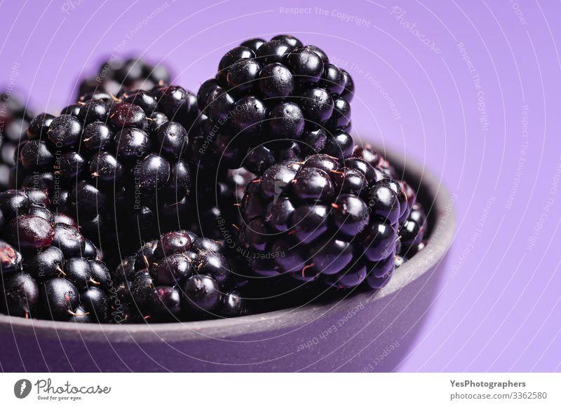 Brombeeren in Nahaufnahme. Reife Brombeerfrüchte Lebensmittel Frucht Dessert Bioprodukte lecker natürlich Beeren Schale Brombeeren farbenfroh Textfreiraum