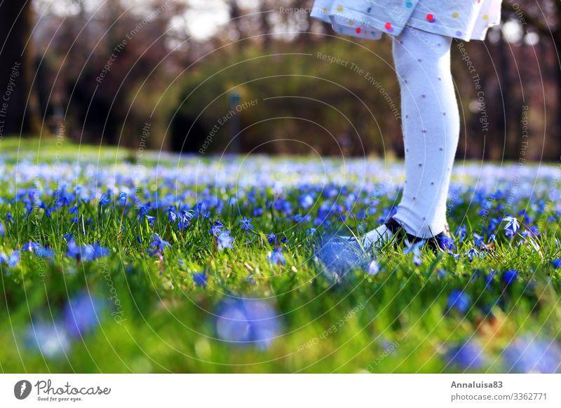 Blaue Wiese Kind Mensch Ferien & Urlaub & Reisen Natur Pflanze blau grün Blume Erholung Mädchen Beine Frühling feminin Gras Park