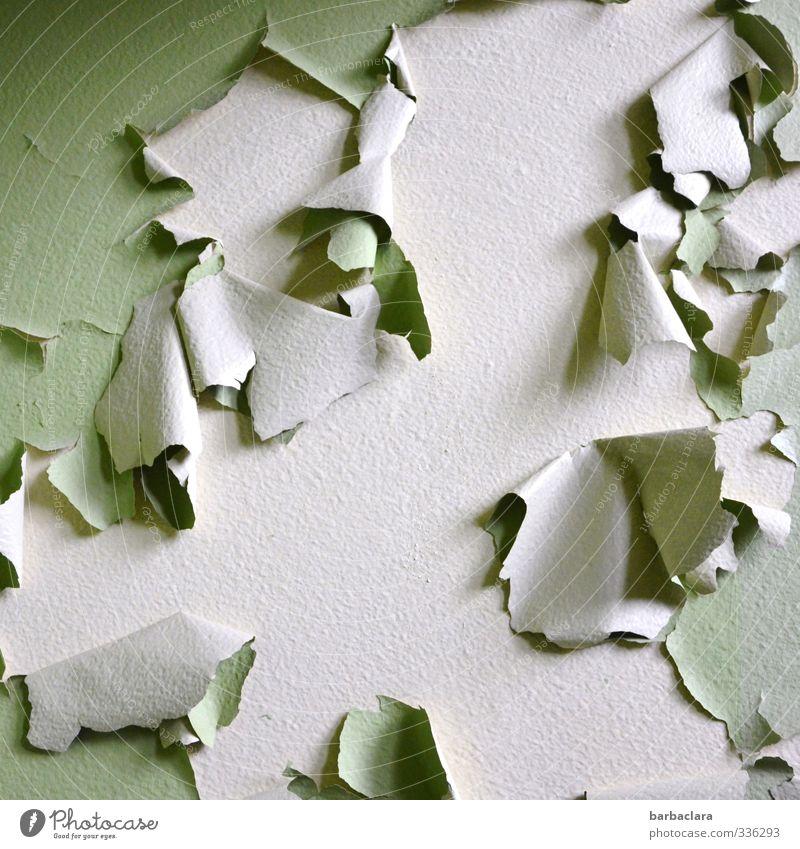 ganz schön fetzig Haus Gebäude Mauer Wand Fassade Tapete Fetzen alt kaputt trashig wild grün ästhetisch bizarr Kultur Ferne Verfall Vergänglichkeit