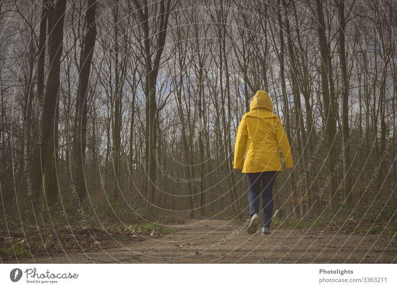 Wohin? Mensch feminin Frau Erwachsene 1 45-60 Jahre Umwelt Natur Landschaft Winter Baum Feld Wald Wege & Pfade Regenjacke Bewegung gehen laufen wandern dunkel