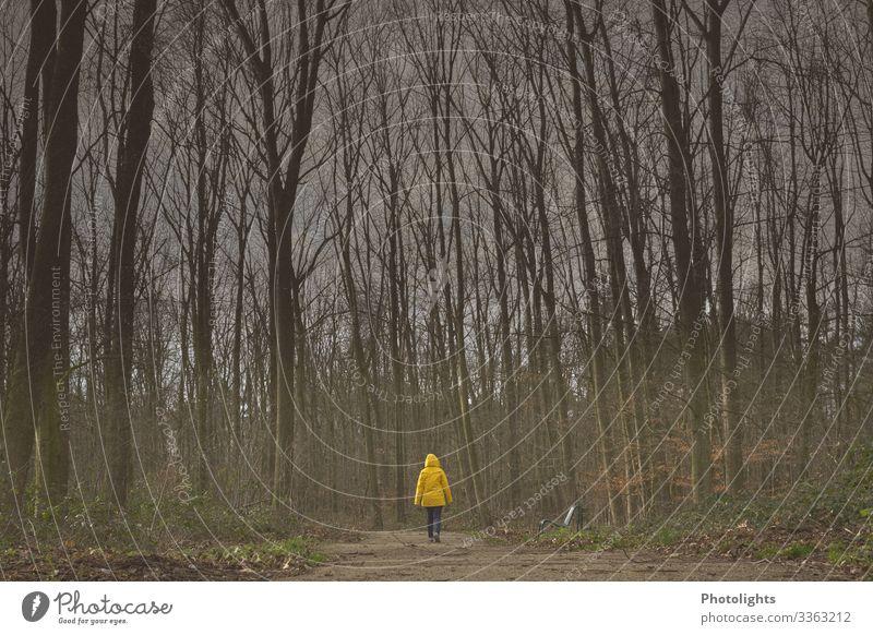 Allein Freiheit wandern Mensch feminin Frau Erwachsene 1 45-60 Jahre Umwelt Natur Landschaft Erde Baum Wald gehen braun gelb grau grün schwarz weiß laufen
