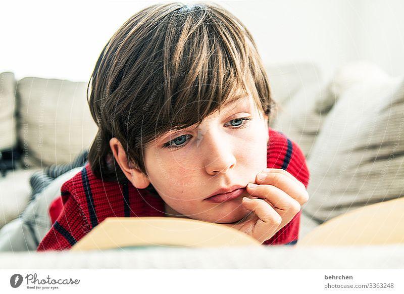 leseratte Kind Kindheit Junge Farbfoto lesen Buch lernen Bildung Schule Kindererziehung Literatur Konzentration nachdenklich Neugier Innenaufnahme Interesse