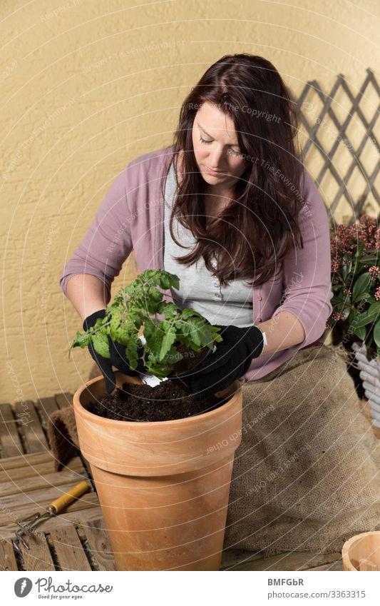 Arbeit auf dem Balkongarten Lifestyle Freude Freizeit & Hobby Garten Mensch feminin Junge Frau Jugendliche Erwachsene Leben 1 30-45 Jahre Natur